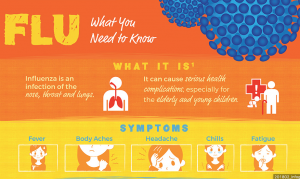 Flu infographic snippet